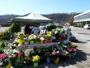 Mother's Day Tent Sale